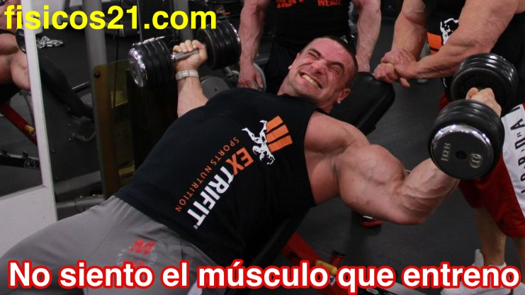 No siento el músculo que entreno